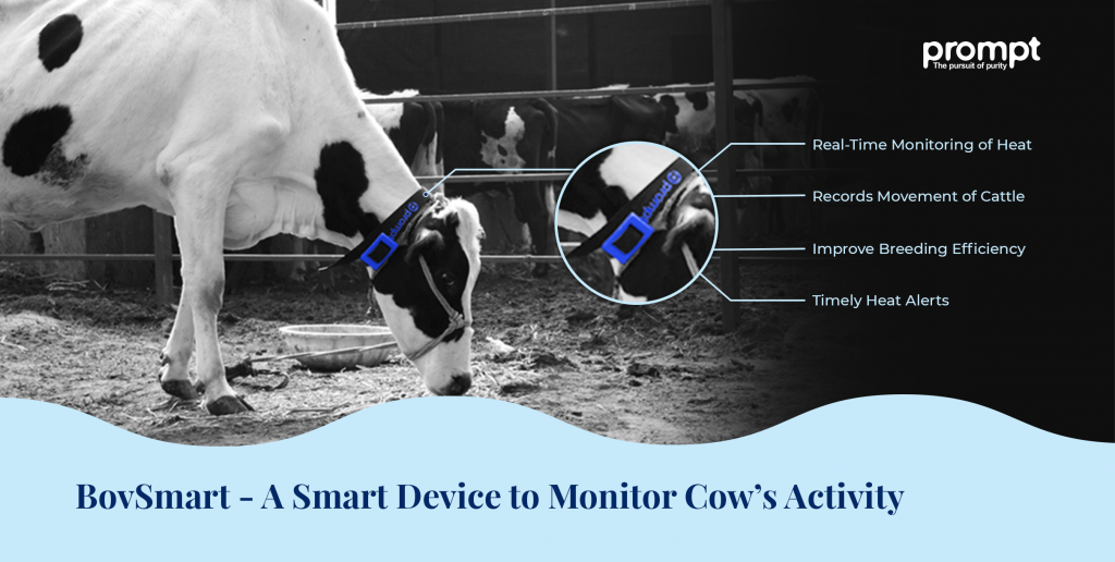 BovSmart - Animal Heat Detection System